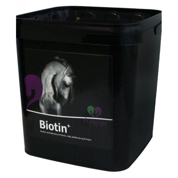 Amequ Biotin+