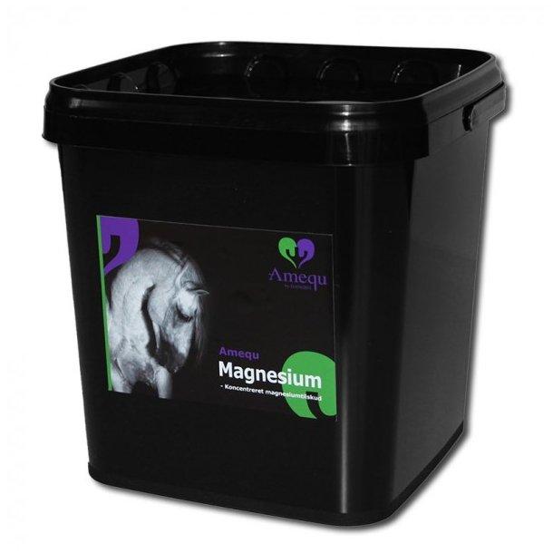 Amequ Magnesium 3 kg